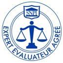logo-snpi-expert